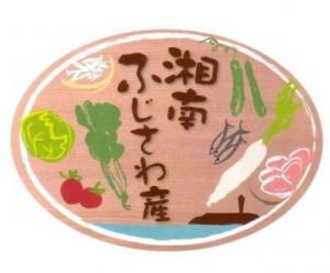 04_fujisawashi