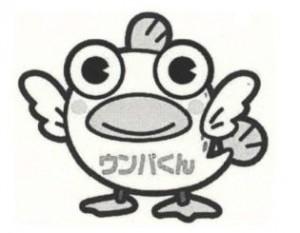 17_matsueshi
